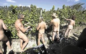 Naked Harvest
