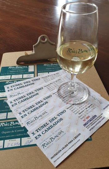 Best Albariño Bodegas Castro Martin Rias Baixas Award Winning White Wine